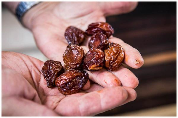 Cheapest Price List of Dried Plums Types in 2019